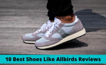 Best Shoes Like Allbirds Reviews