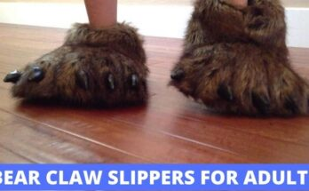 Bear Claw Slippers for Adults