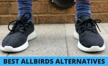 allbirds alternatives